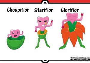De gauche à droite: Choupiflor, Stariflor et Gloriflor.